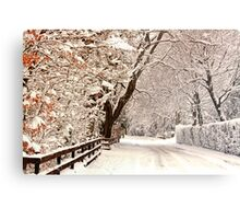Ruff Lane - Snow Scene Metal Print