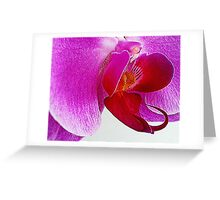 Heart of the Orchid flower Greeting Card