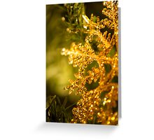 Christmas Sparkle Greeting Card