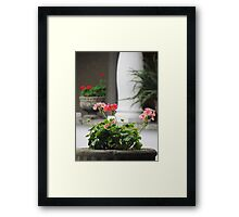 Presidential Flora Framed Print
