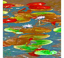 Water Lilies #1f Photographic Print
