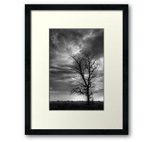 Tree and Sky Framed Print