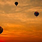 Hot-Air Balloons at Sunrise  by Chuck Gardner