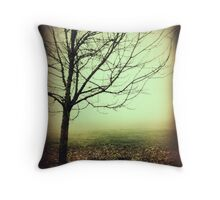Hazy Shade of Winter Throw Pillow