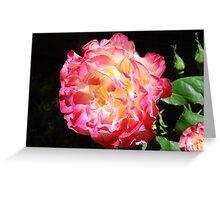 Rose Flower Art Print Big Pink Roses Floral Greeting Card