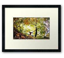 Handstand at Central Park,  Park, New York Framed Print