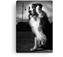 Saying Goodbye Canvas Print