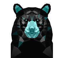 GTA V Bear Photographic Print