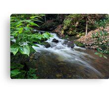 Bushkill waterfall creek with full spring water  Canvas Print