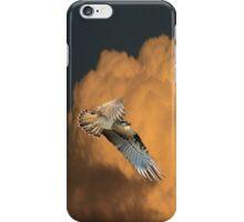 Sunset Osprey iPhone Case iPhone Case/Skin
