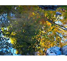 Beauty above and below Photographic Print