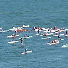 Paddle Race on Bellingham Bay by rferrisx
