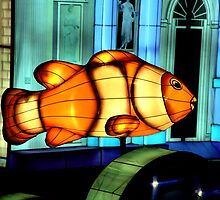 I Found Nemo by Bob Wall