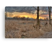Sunrise in the Marsh Canvas Print