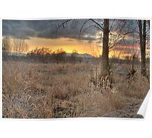 Sunrise in the Marsh Poster