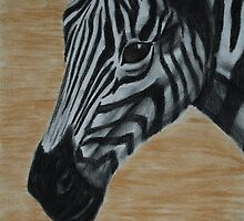 Tinted charcoal Zebra - Africa by gogston