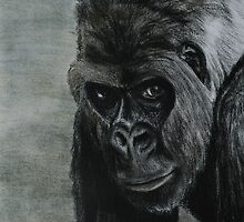 Tinted Charcoal Gorilla by gogston