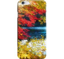 The Glory of a New England Autumn iPhone Case/Skin