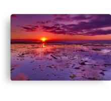 """Shimmering At Sunrise"" Canvas Print"