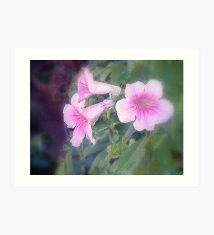 Pink bells Art Print