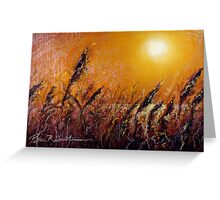 """""""Early Morning Heat"""" Greeting Card"""
