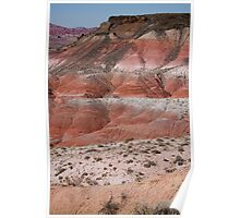 The Painted Desert  8020 Poster