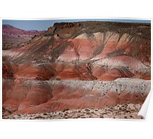 The Painted Desert  8018 Poster