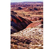 The Painted Desert  8023 Photographic Print