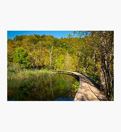 On the wooden path Photographic Print
