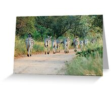 THIS IS THE WAY! - BURCHILLS ZEBRA - Equus burchelli  Greeting Card