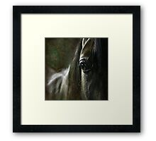 lost freedom Framed Print