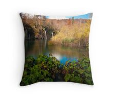 water all around Throw Pillow