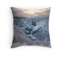 In the winter time Throw Pillow