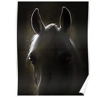 in the stable Poster