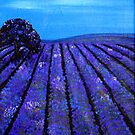 Lavender Fields Tasmania by Rachel Ireland-Meyers