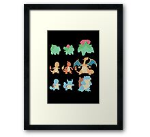 Evolution of Pokemon Framed Print