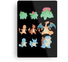 Evolution of Pokemon Metal Print