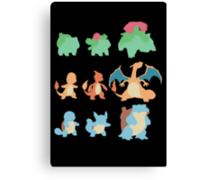 Evolution of Pokemon Canvas Print
