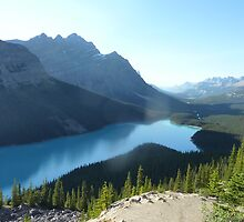 Peyto Lake by Jennie Whiting
