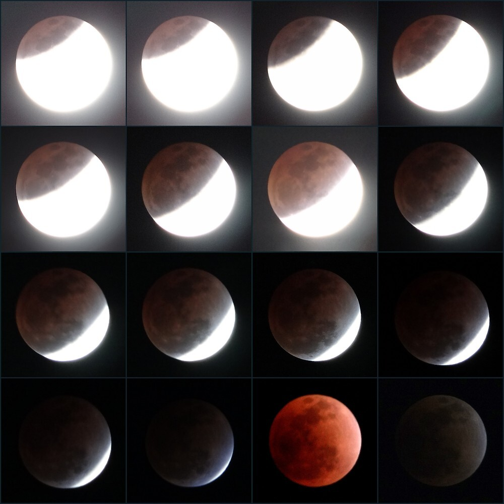 Lunar Eclipse 10th December, 2011 by Ronojoy