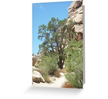 Joshua Tree National Park Greeting Card