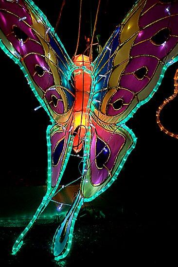 Fly Away by Bob Wall