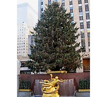 The Rockefeller Center Christmas Tree 2011 Photographic Print