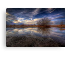 About A Tree Canvas Print