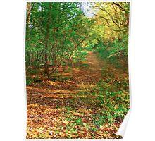 Leaf lane Poster