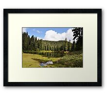 Greener Days Framed Print