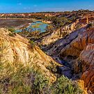 The Murray River at Renmark by Bette Devine