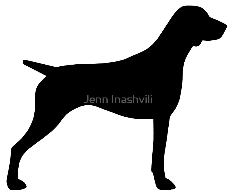 Quot German Shorthaired Pointer Silhouette S Quot Stickers By