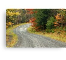 Empty forest road curve at autumn time  Canvas Print