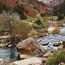 Late Autumn at Zion National Park by Olga Zvereva